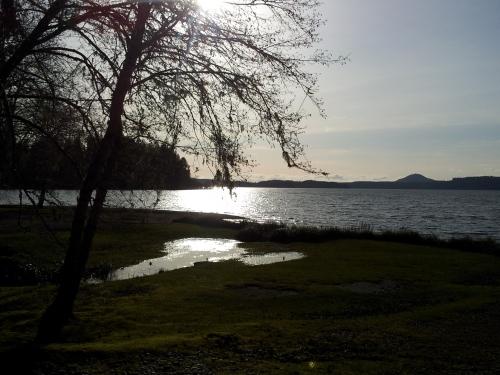 Beautiful Lake Quinault